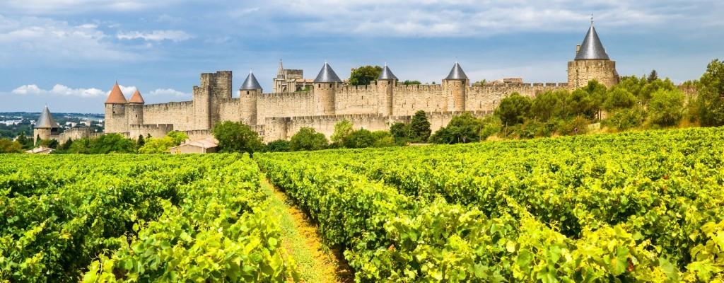 Carcassonne vineyards, France