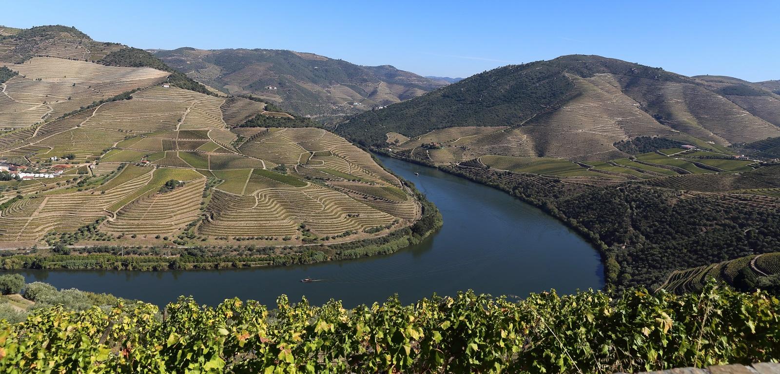 landscape of Alto Duro Wine region, Portugal