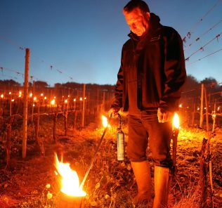 fighting frost in England's wine country